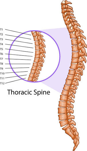Understanding Chiropractic Care And Your Health Part 2 The